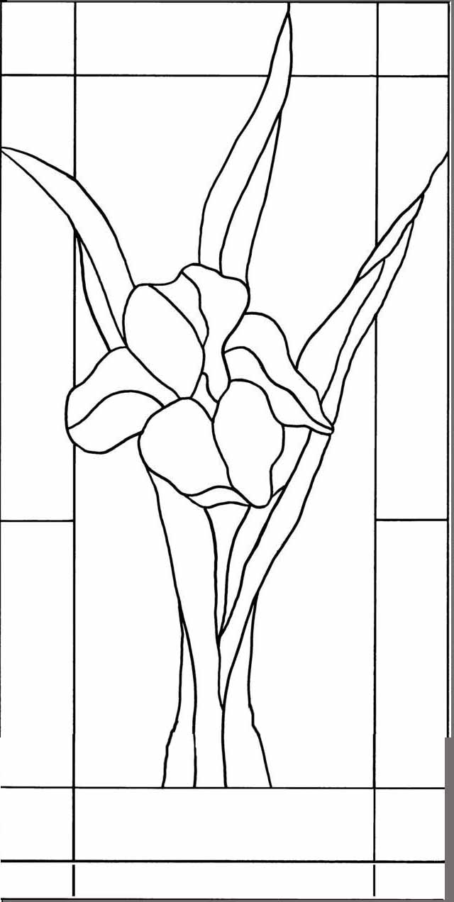 photo relating to Free Printable Stained Glass Patterns named The Vinery Stained Gl Studio for all your stained gl